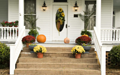 Fall Interior Must-Haves