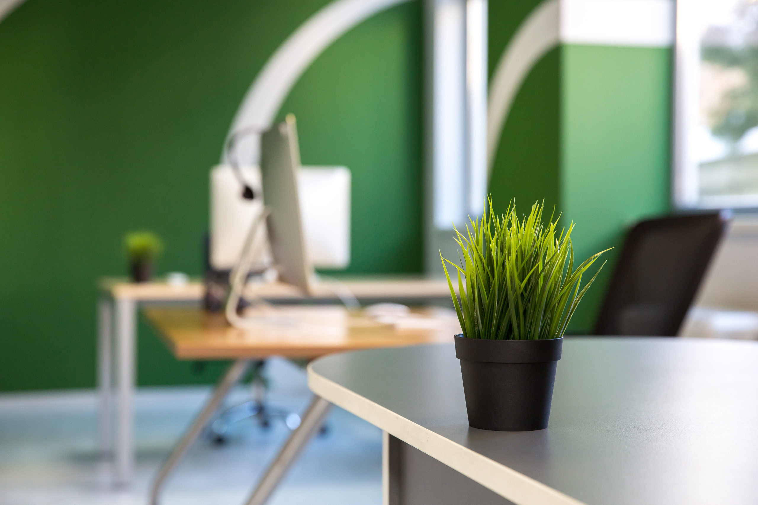 How Paint Colors Increase Productivity in the Workplace